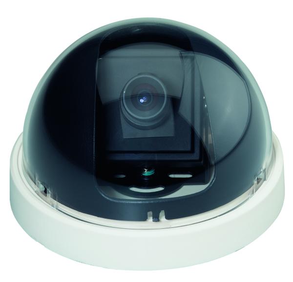 Kamera-Atrappe im Kugelgehäuse