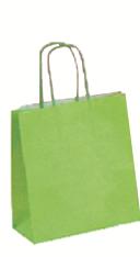 Papiertragetasche hellgrün